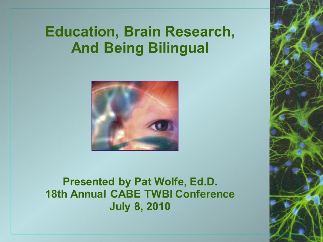 Education, Brain Research, And Being Bilingual Presented by Pat Wolfe, Ed.D. 18th Annual CABE TWBI Conference July 8, 2010