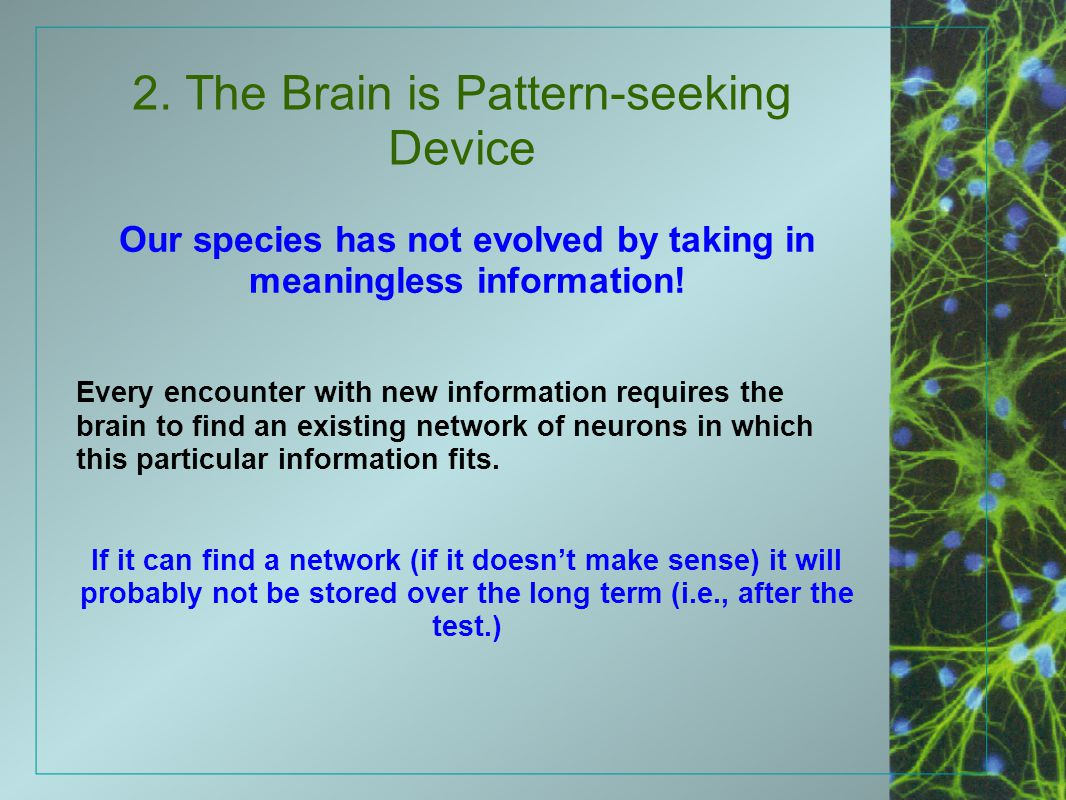 2. The Brain is Pattern-seeking Device Our species has not evolved by taking in meaningless information! Every encounter with new information requires