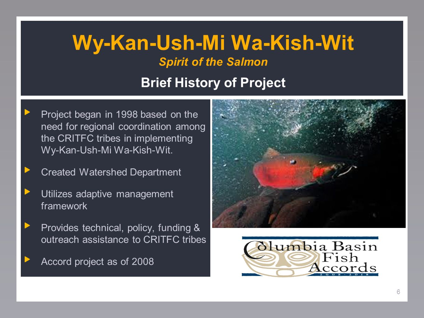 6 Wy-Kan-Ush-Mi Wa-Kish-Wit Spirit of the Salmon Brief History of Project Project began in 1998 based on the need for regional coordination among the CRITFC tribes in implementing Wy-Kan-Ush-Mi Wa-Kish-Wit.