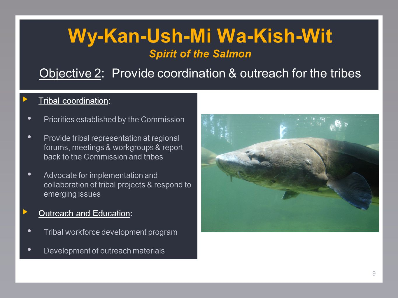 9 Wy-Kan-Ush-Mi Wa-Kish-Wit Spirit of the Salmon Objective 2: Provide coordination & outreach for the tribes Tribal coordination: Priorities established by the Commission Provide tribal representation at regional forums, meetings & workgroups & report back to the Commission and tribes Advocate for implementation and collaboration of tribal projects & respond to emerging issues Outreach and Education: Tribal workforce development program Development of outreach materials