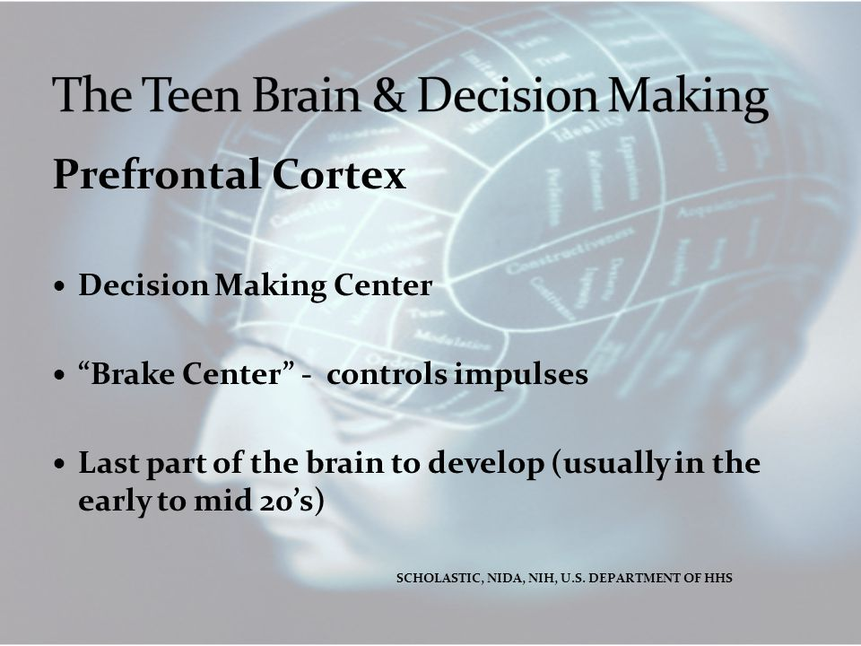 """Prefrontal Cortex Decision Making Center """"Brake Center"""" - controls impulses Last part of the brain to develop (usually in the early to mid 20's) SCHOL"""