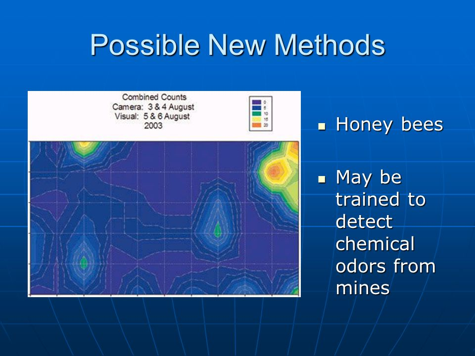 Possible New Methods Honey bees Honey bees May be trained to detect chemical odors from mines May be trained to detect chemical odors from mines