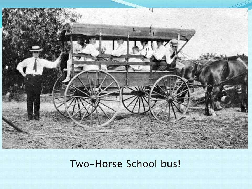 Two-Horse School bus!