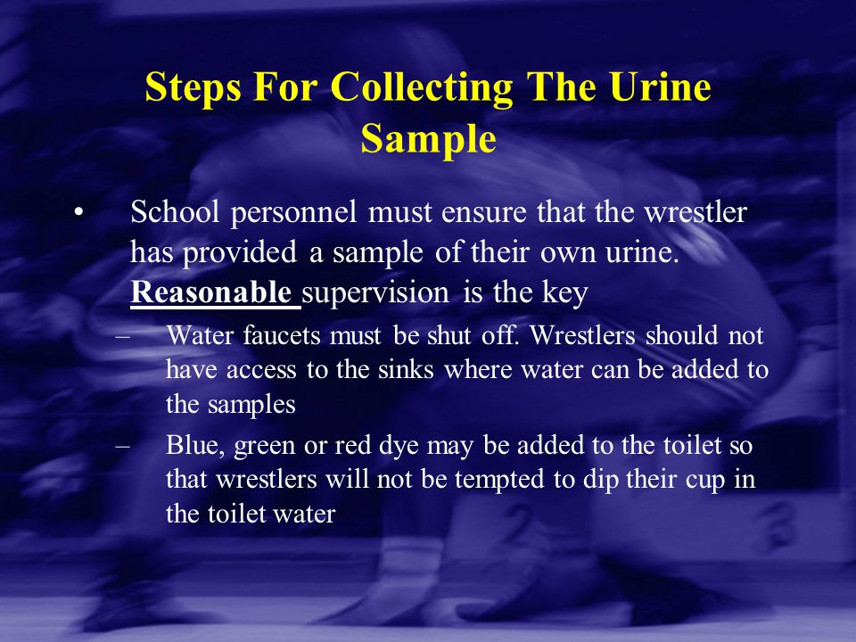 Steps For Collecting The Urine Sample School personnel must ensure that the wrestler has provided a sample of their own urine. Reasonable supervision