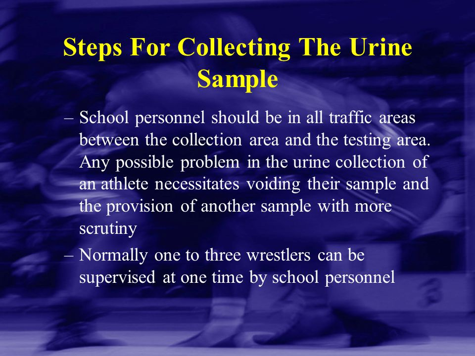 Steps For Collecting The Urine Sample –School personnel should be in all traffic areas between the collection area and the testing area. Any possible