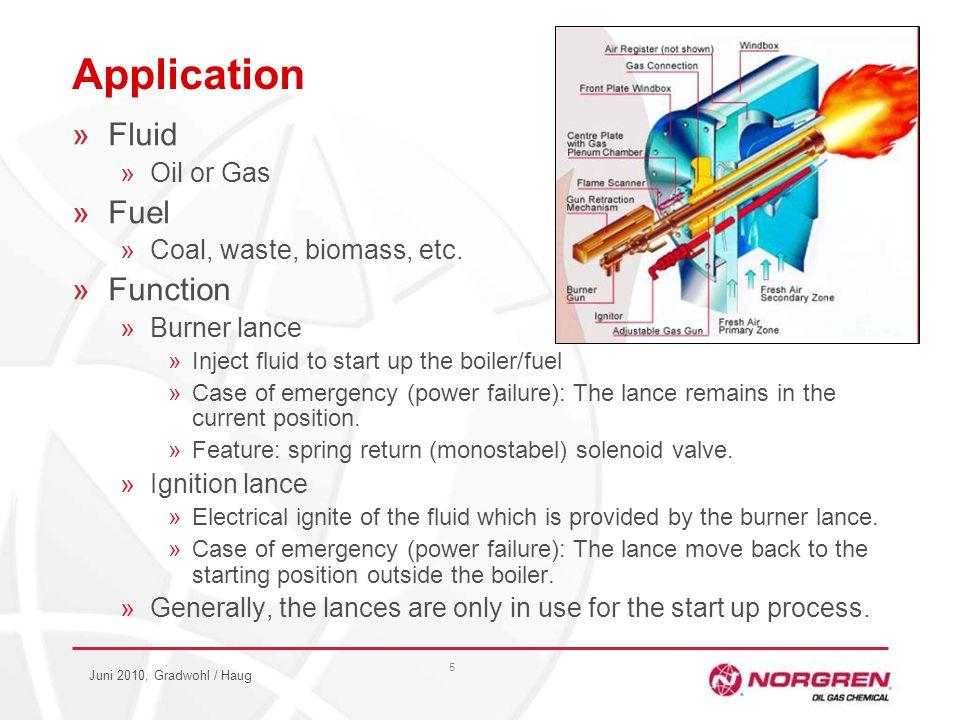 Juni 2010, Gradwohl / Haug 5 Application »Fluid »Oil or Gas »Fuel »Coal, waste, biomass, etc.