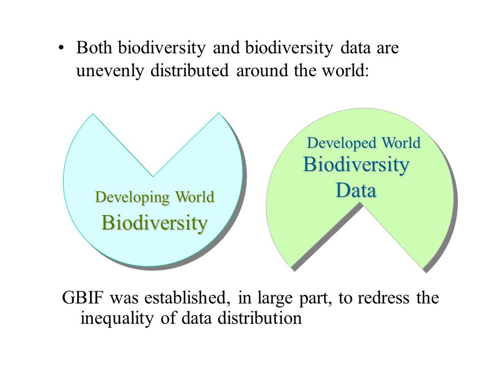 Stichting NLBIF: Dutch Node of GBIF Netherlands Biodiversity Information Facility Objectives: Sharing of biodiversity data, information and know-how available in the Netherlands Providing access for Dutch users to biodiversity data, information and know-how in other countries Develop ICT tools for data management, analysis, exchange, and electronic dissemination worldwide