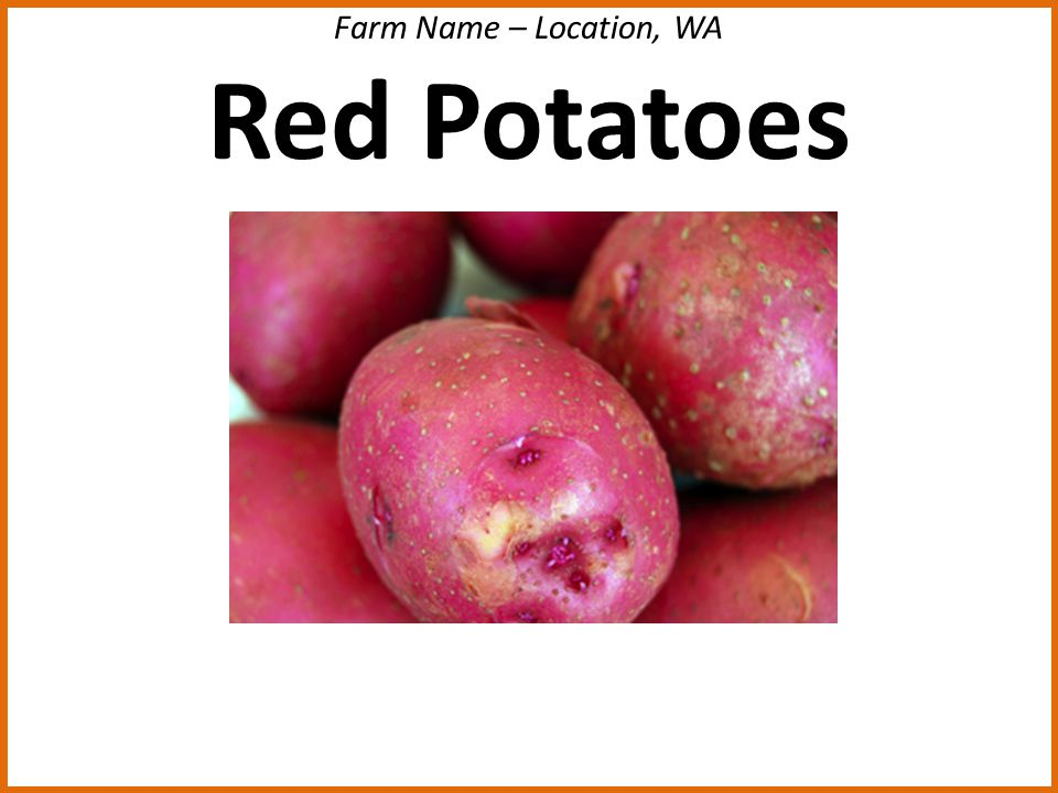 Farm Name – Location, WA Red Potatoes