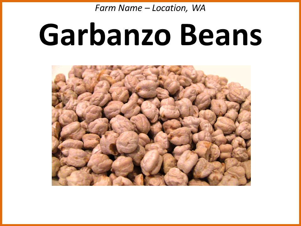 Farm Name – Location, WA Garbanzo Beans
