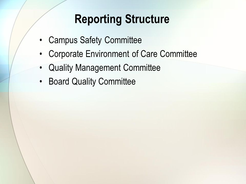 Reporting Structure Campus Safety Committee Corporate Environment of Care Committee Quality Management Committee Board Quality Committee