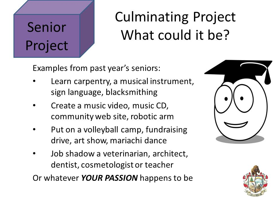 Senior Project Examples from past year's seniors: Learn carpentry, a musical instrument, sign language, blacksmithing Create a music video, music CD,