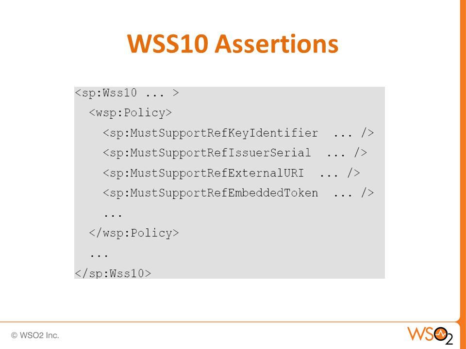 WSS10 Assertions