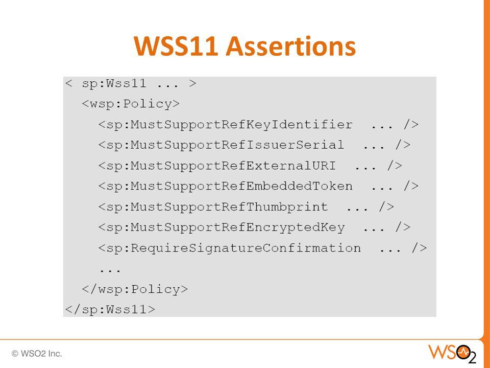 WSS11 Assertions