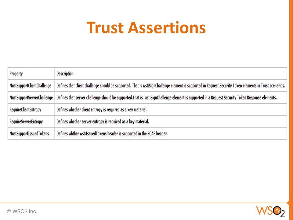 Trust Assertions
