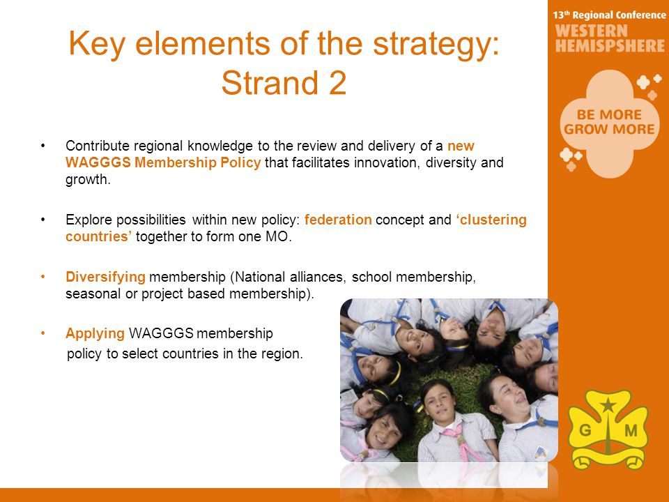 Key elements of the strategy: Strand 2 Contribute regional knowledge to the review and delivery of a new WAGGGS Membership Policy that facilitates innovation, diversity and growth.