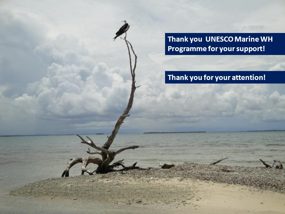 Thank you UNESCO Marine WH Programme for your support! Thank you for your attention!