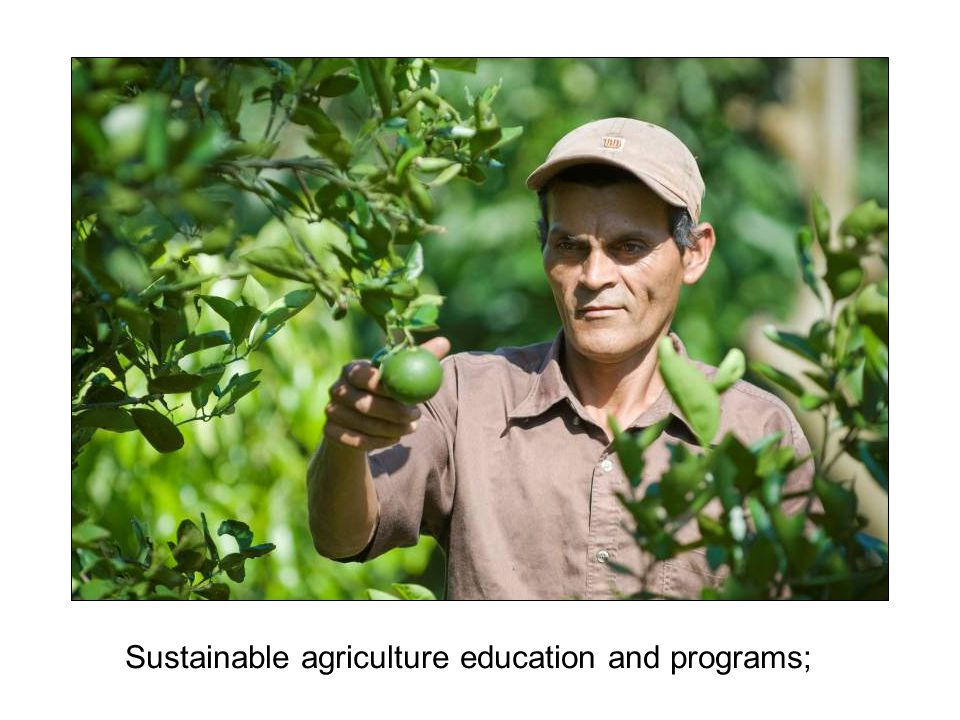 Sustainable agriculture education and programs;