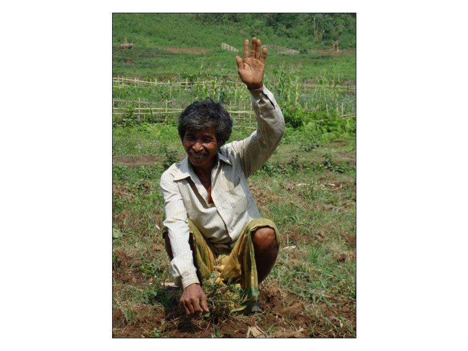 Job training and restoration of livelihoods;