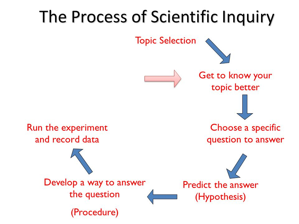 The Process of Scientific Inquiry Choose a specific question to answer Predict the answer (Hypothesis) Develop a way to answer the question (Procedure