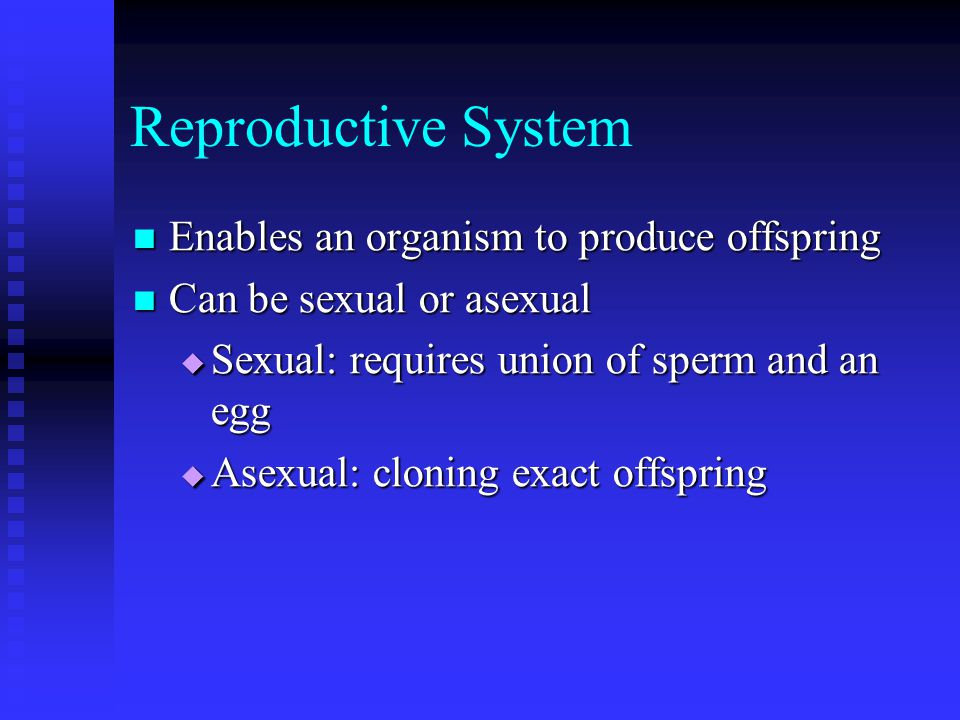 Reproductive System Enables an organism to produce offspring Enables an organism to produce offspring Can be sexual or asexual Can be sexual or asexual  Sexual: requires union of sperm and an egg  Asexual: cloning exact offspring