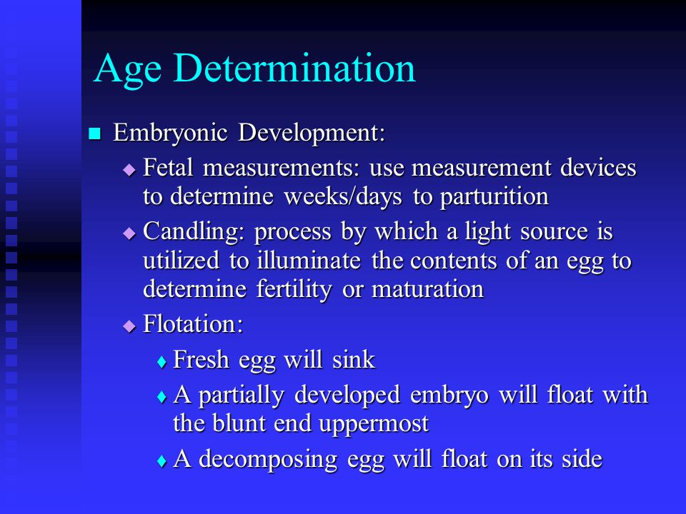 Age Determination Embryonic Development: Embryonic Development:  Fetal measurements: use measurement devices to determine weeks/days to parturition  Candling: process by which a light source is utilized to illuminate the contents of an egg to determine fertility or maturation  Flotation:  Fresh egg will sink  A partially developed embryo will float with the blunt end uppermost  A decomposing egg will float on its side