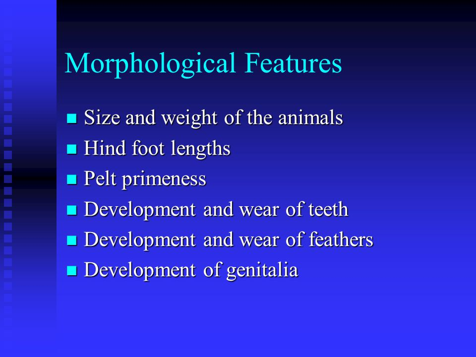 Morphological Features Size and weight of the animals Size and weight of the animals Hind foot lengths Hind foot lengths Pelt primeness Pelt primeness Development and wear of teeth Development and wear of teeth Development and wear of feathers Development and wear of feathers Development of genitalia Development of genitalia