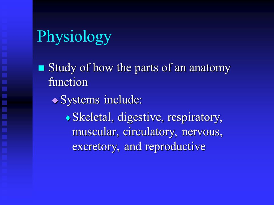 Physiology Study of how the parts of an anatomy function Study of how the parts of an anatomy function  Systems include:  Skeletal, digestive, respiratory, muscular, circulatory, nervous, excretory, and reproductive