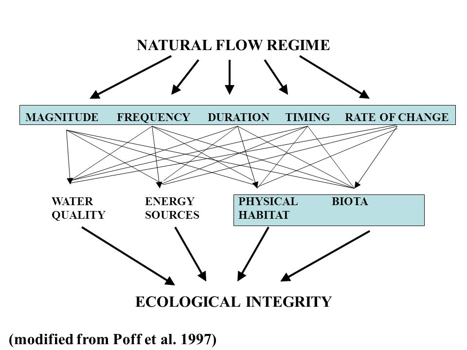NATURAL FLOW REGIME MAGNITUDE FREQUENCY DURATION TIMING RATE OF CHANGE WATERENERGYPHYSICALBIOTA QUALITYSOURCESHABITAT ECOLOGICAL INTEGRITY (modified from Poff et al.