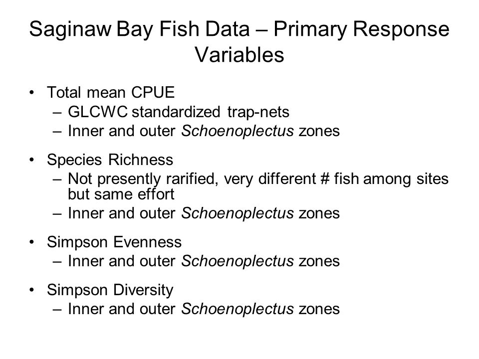 Saginaw Bay Fish Data – Primary Response Variables Total mean CPUE –GLCWC standardized trap-nets –Inner and outer Schoenoplectus zones Species Richness –Not presently rarified, very different # fish among sites but same effort –Inner and outer Schoenoplectus zones Simpson Evenness –Inner and outer Schoenoplectus zones Simpson Diversity –Inner and outer Schoenoplectus zones