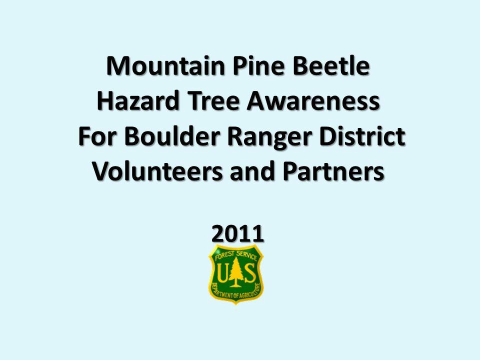 Mountain Pine Beetle Hazard Tree Awareness For Boulder Ranger District Volunteers and Partners 2011