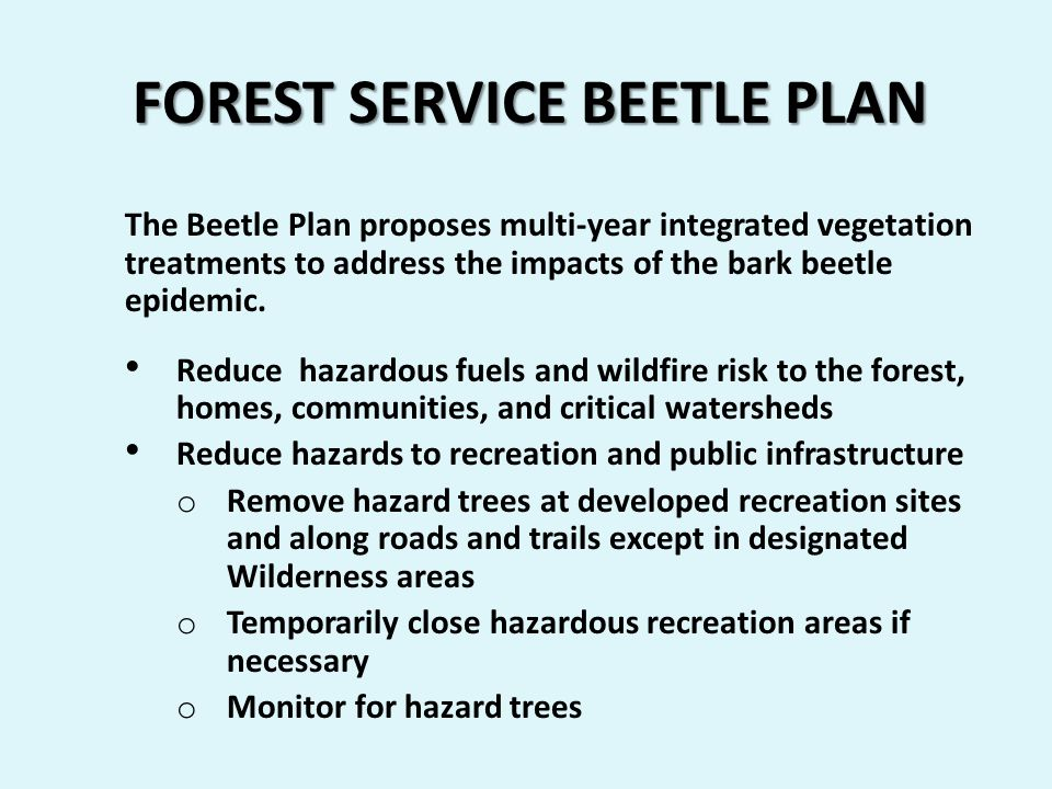 FOREST SERVICE BEETLE PLAN The Beetle Plan proposes multi-year integrated vegetation treatments to address the impacts of the bark beetle epidemic.