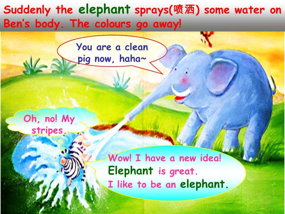 He meets an elephant on his way. Hi, elephant . Look at me, I'm a cool zebra.