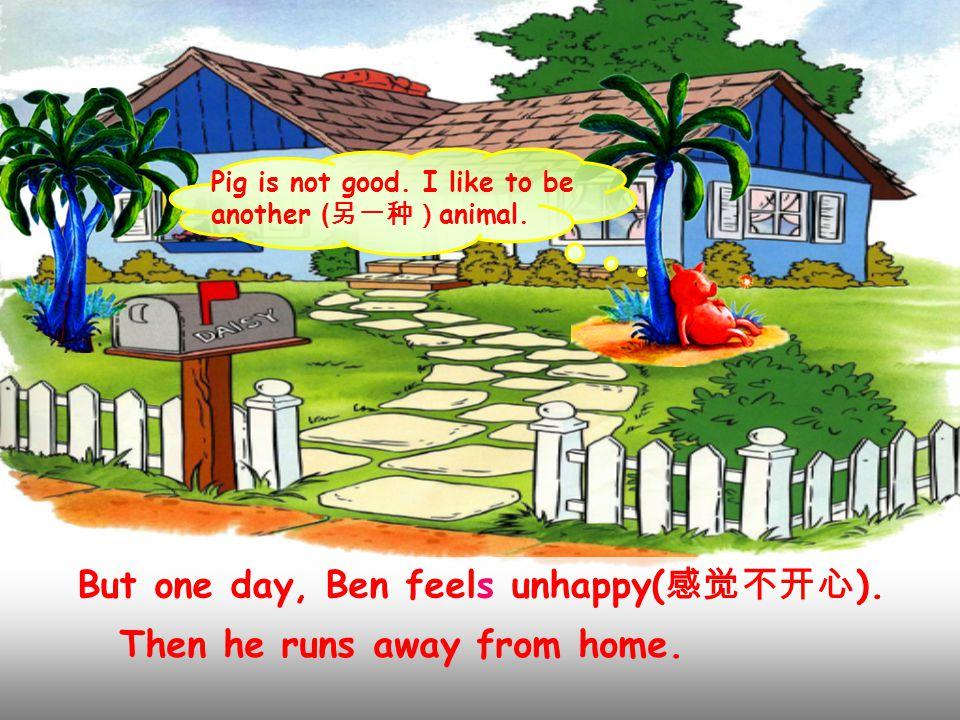 Ben is a little pig. He's a happy guy. ( 家伙 ) He likes jumping, running, swimming...