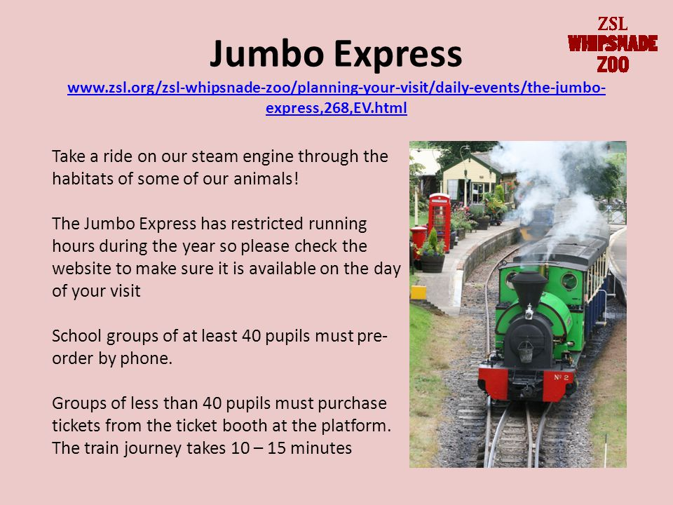 Jumbo Express www.zsl.org/zsl-whipsnade-zoo/planning-your-visit/daily-events/the-jumbo- express,268,EV.html www.zsl.org/zsl-whipsnade-zoo/planning-your-visit/daily-events/the-jumbo- express,268,EV.html Take a ride on our steam engine through the habitats of some of our animals.