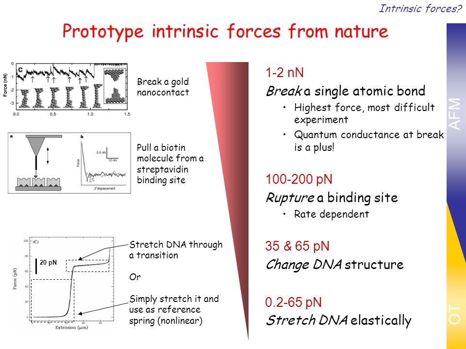 Prototype intrinsic forces from nature 1-2 nN Break a single atomic bond Highest force, most difficult experiment Quantum conductance at break is a plus.