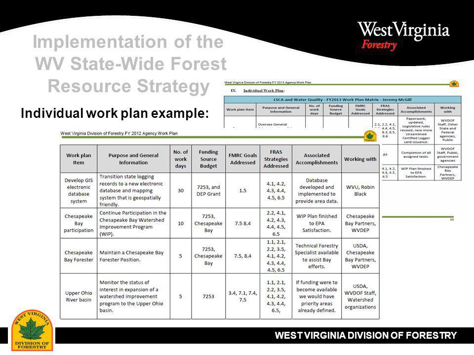 WEST VIRGINIA DIVISION OF FORESTRY Implementation of the WV State-Wide Forest Resource Strategy Individual work plan example: