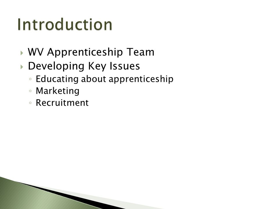 WV Apprenticeship Team  Developing Key Issues ◦ Educating about apprenticeship ◦ Marketing ◦ Recruitment