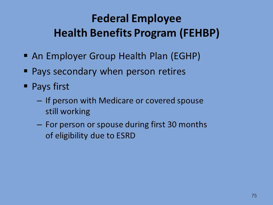 75 Federal Employee Health Benefits Program (FEHBP)  An Employer Group Health Plan (EGHP)  Pays secondary when person retires  Pays first – If pers