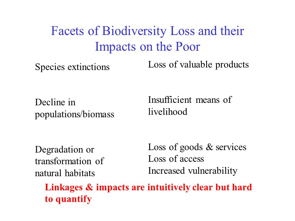 Facets of Biodiversity Loss and their Impacts on the Poor Species extinctions Decline in populations/biomass Degradation or transformation of natural habitats Loss of valuable products Insufficient means of livelihood Loss of goods & services Loss of access Increased vulnerability Linkages & impacts are intuitively clear but hard to quantify
