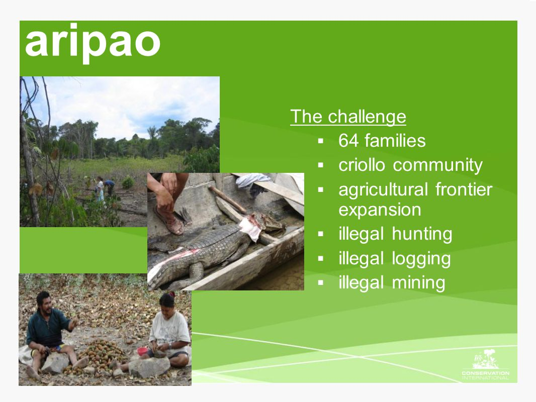 aripao The challenge  64 families  criollo community  agricultural frontier expansion  illegal hunting  illegal logging  illegal mining