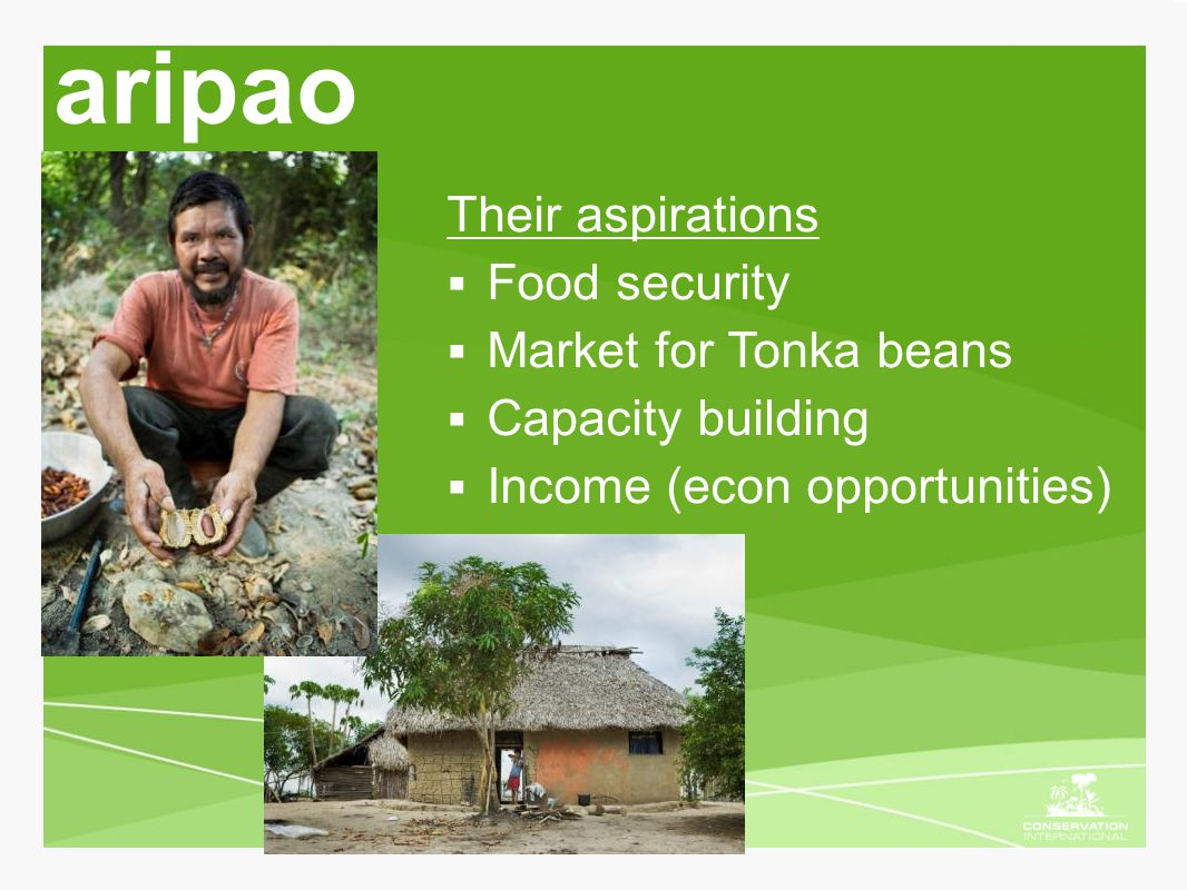 aripao Their aspirations  Food security  Market for Tonka beans  Capacity building  Income (econ opportunities)
