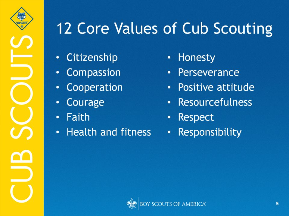 5 12 Core Values of Cub Scouting
