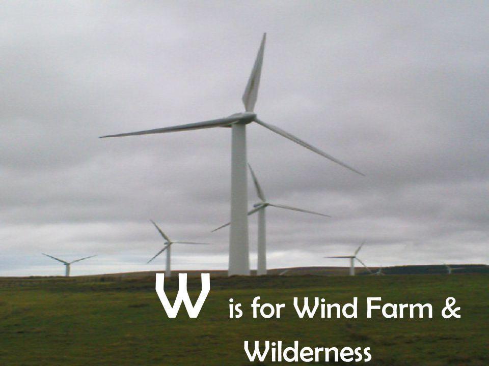 W is for Wind Farm & Wilderness