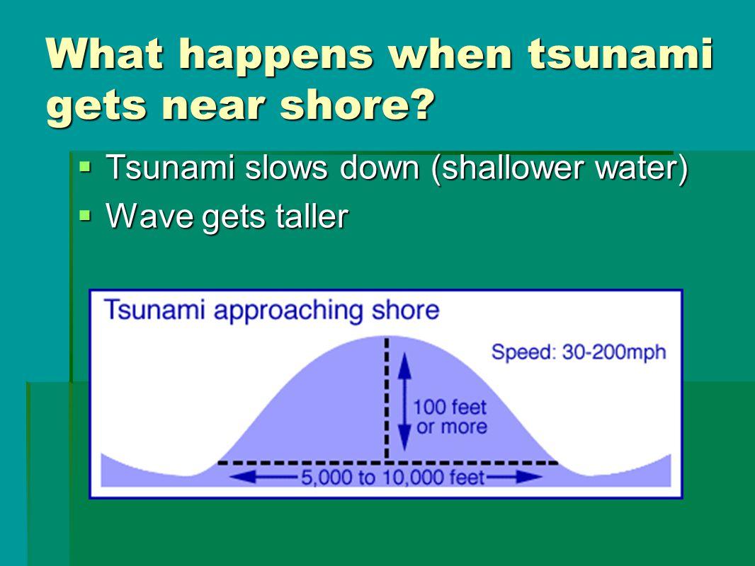 What happens when tsunami gets near shore.