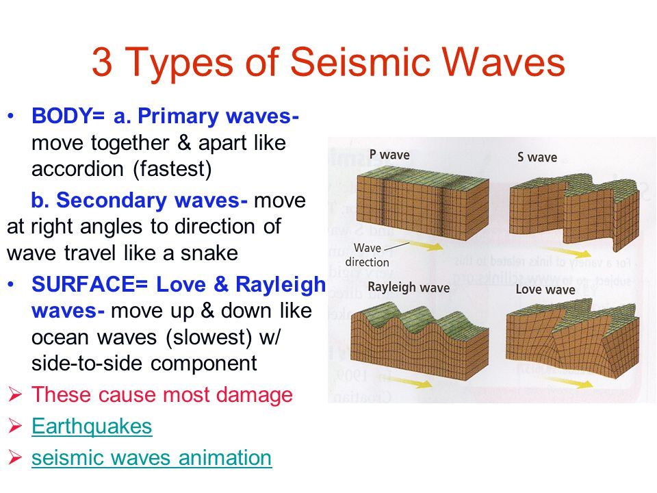 3 Types of Seismic Waves BODY= a. Primary waves- move together & apart like accordion (fastest) b. Secondary waves- move at right angles to direction
