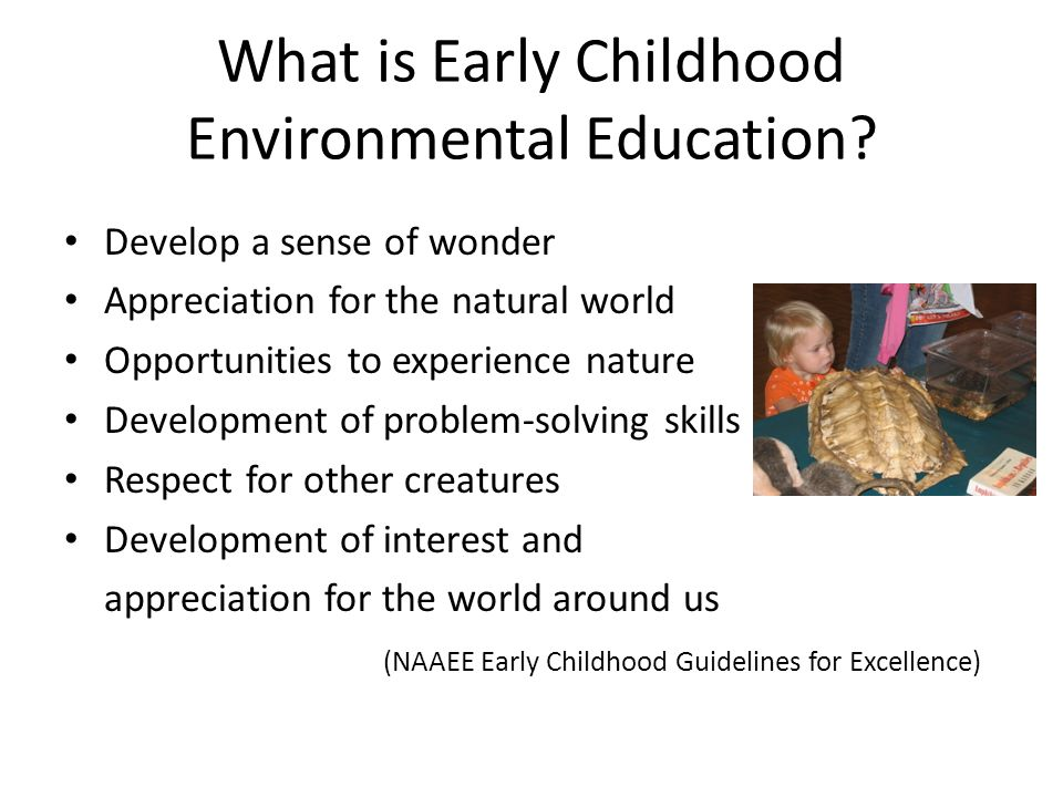 What is Early Childhood Environmental Education.