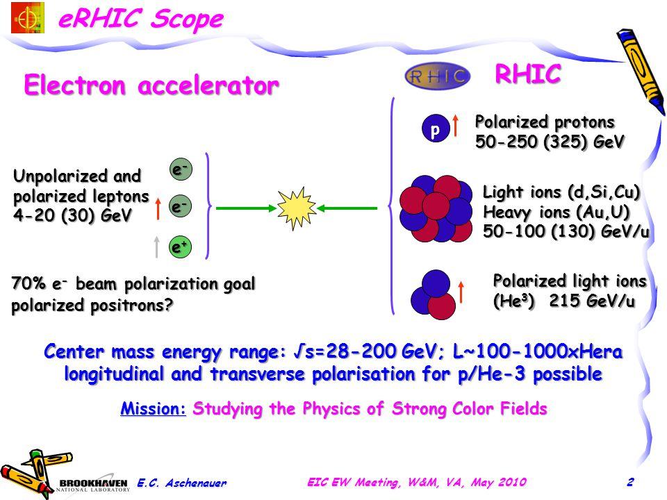 The Relativistic Heavy-Ion Collider @ BNL E.C.
