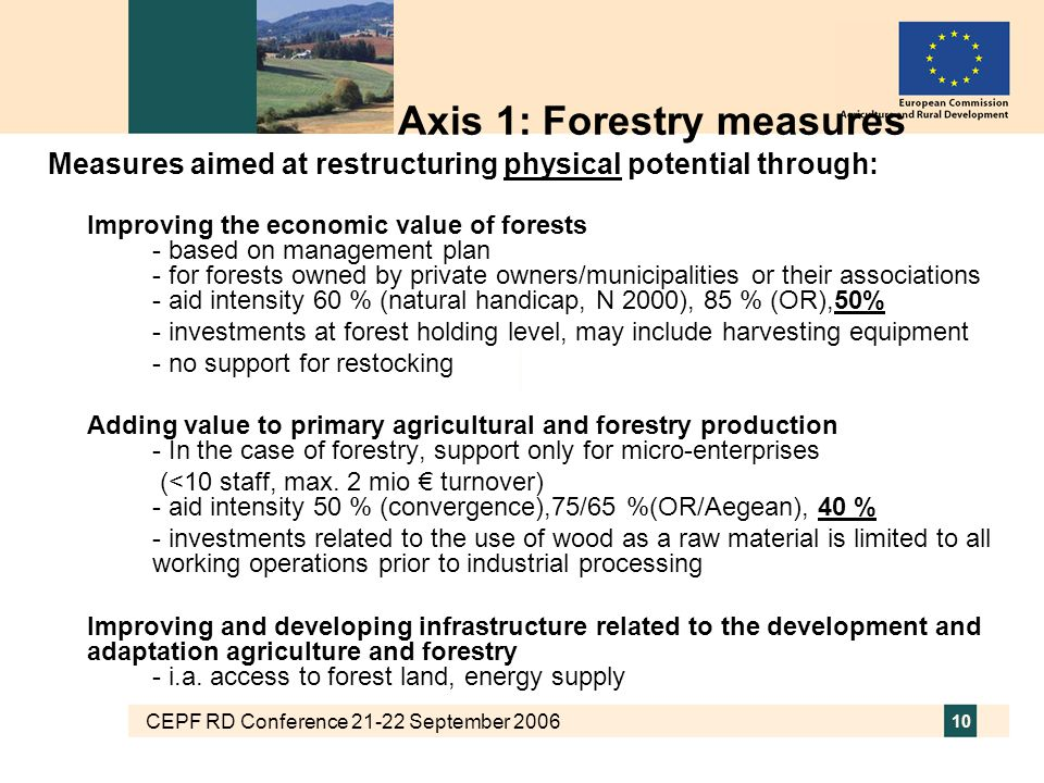 CEPF RD Conference 21-22 September 2006 10 Axis 1: Forestry measures Measures aimed at restructuring physical potential through: Improving the economi