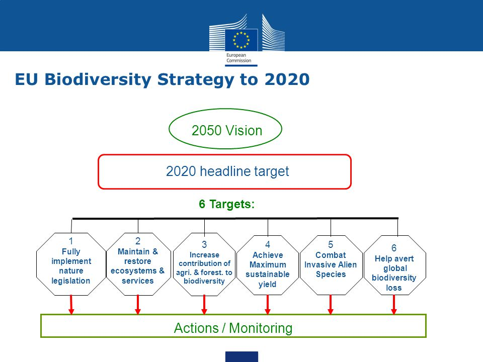 2050 Vision 2020 headline target 1 Fully implement nature legislation 2 Maintain & restore ecosystems & services 3 Increase contribution of agri. & fo