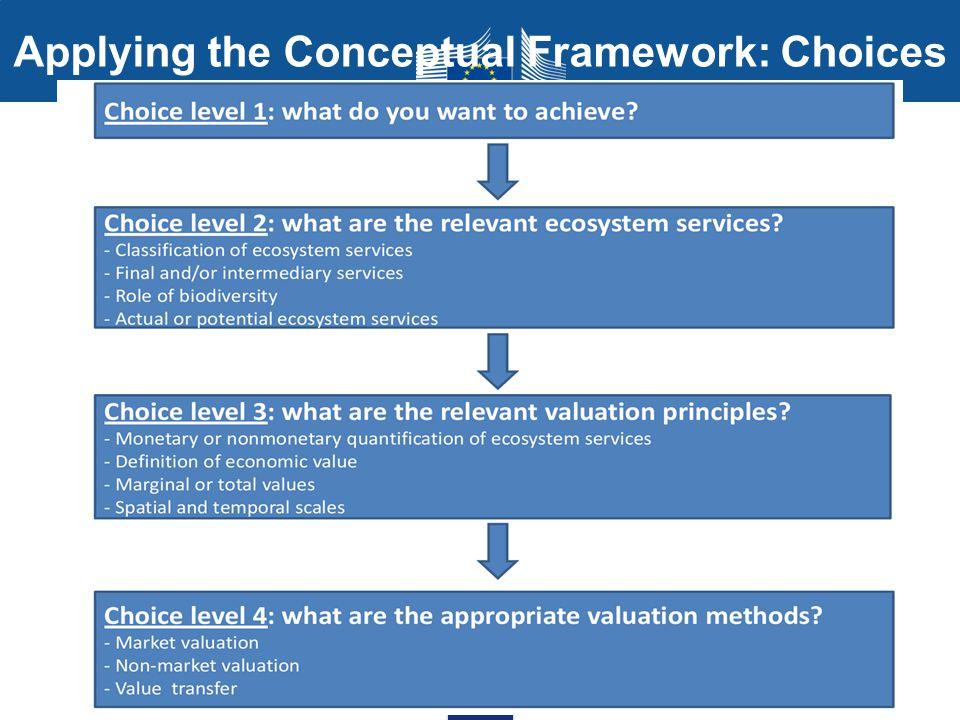 Applying the Conceptual Framework: Choices